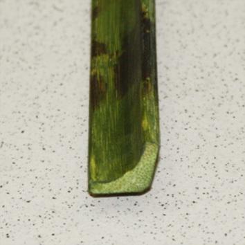 Планка плинтус D 05-07
