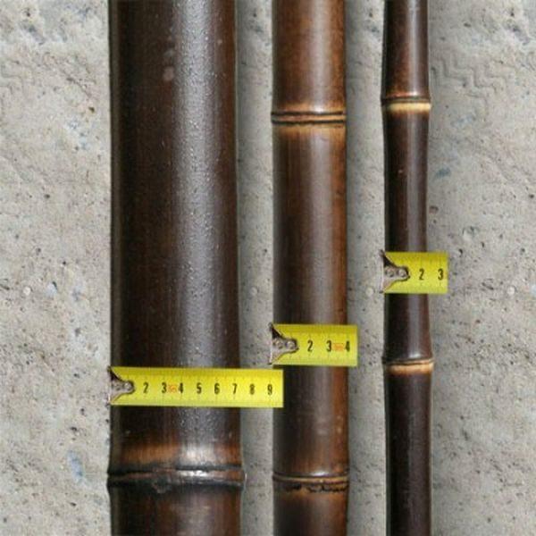 половинка ствола бамбука шоколадная d=60-70 мм